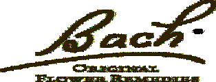 stress.bg logo bach